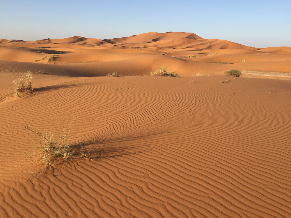 201505_Morocco_iphone-3463